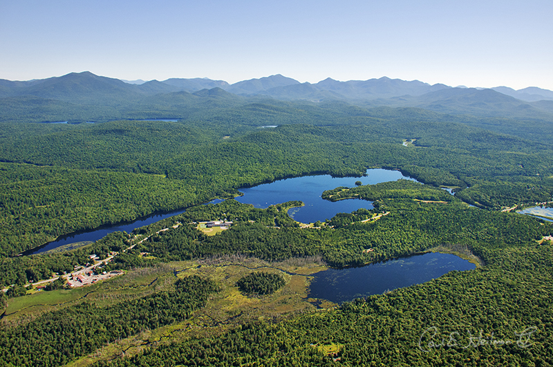 5 Things You Need to Know |August 2020 ADK Conservation News