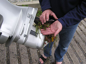 Uploaded Image: /uploads/Invasives Blog/Tangled_prop_w milfoil_small.jpg