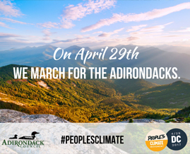 Join us for the People's Climate March in Washington, DC