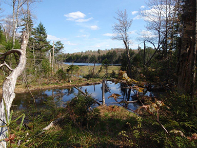 Uploaded Image: /vs-uploads/bob blog/Upper_South-Pond_5_Ponds_Wild_small.jpg