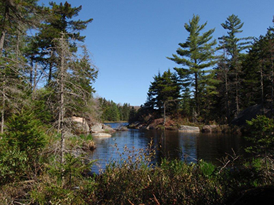 Uploaded Image: /vs-uploads/bob blog/PepperboxLake2_small.jpg