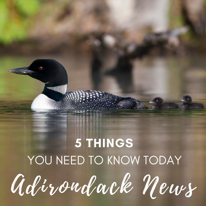 5 Things You Need to Know Today | Adirondack News