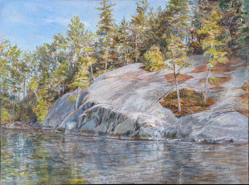 Adirondacks & My Art | Interview with Artist Anne Diggory