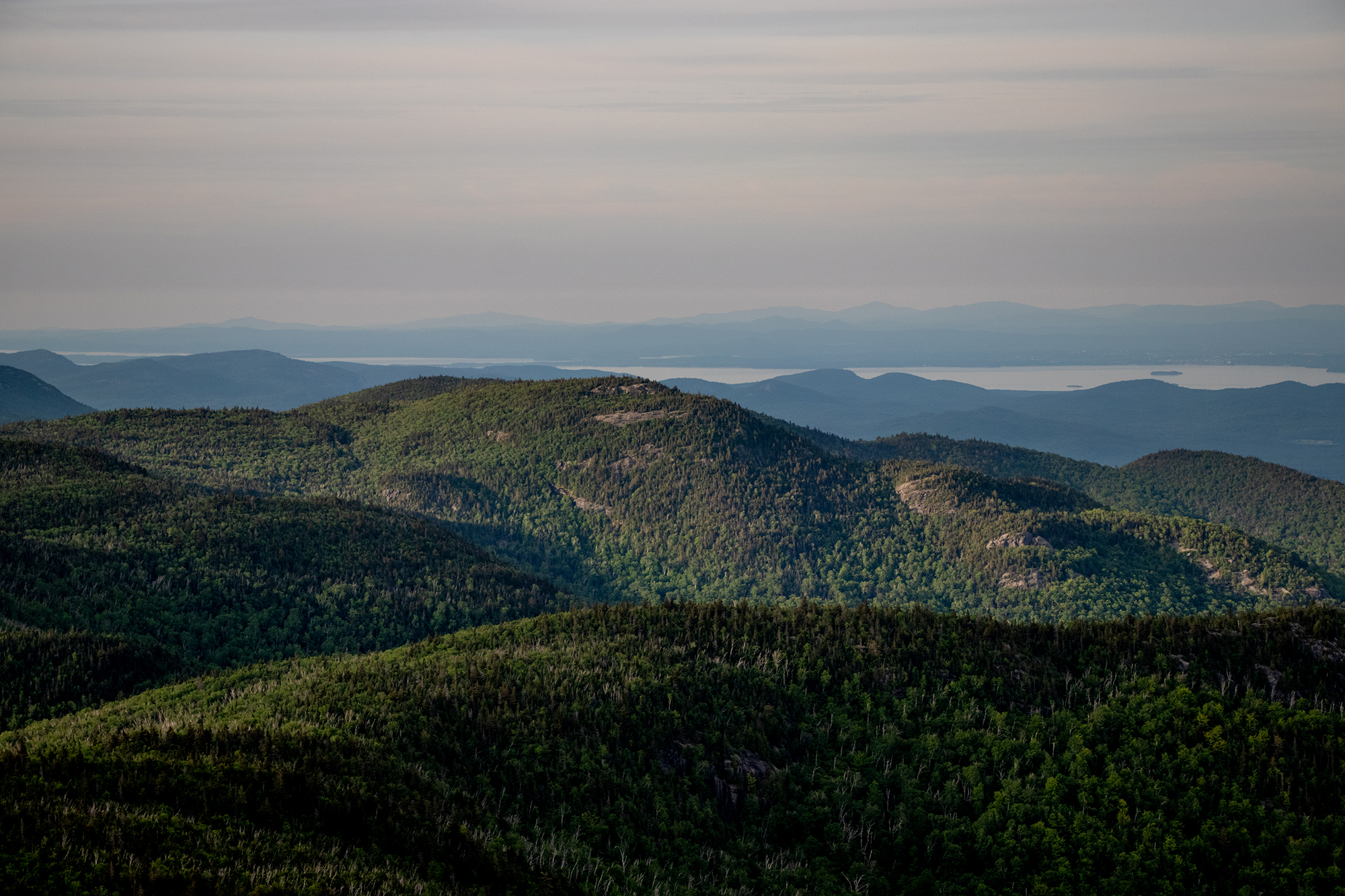 2019 NYS Legislative Session | An Adirondack Review