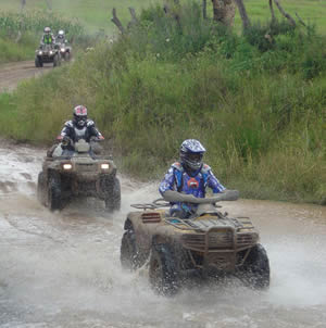 Defend Your Forest Preserve from the Impacts of ATVs!
