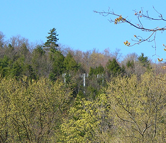 Feds Preserve Local & Adirondack Park Agency Jurisdiction over Size, Shape of Cell Towers