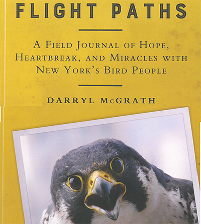 New Book Features Birds in the Adirondacks