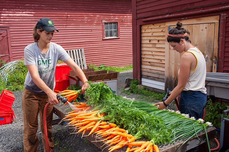 Uploaded Image: /vs-uploads/images/Farm1.jpg