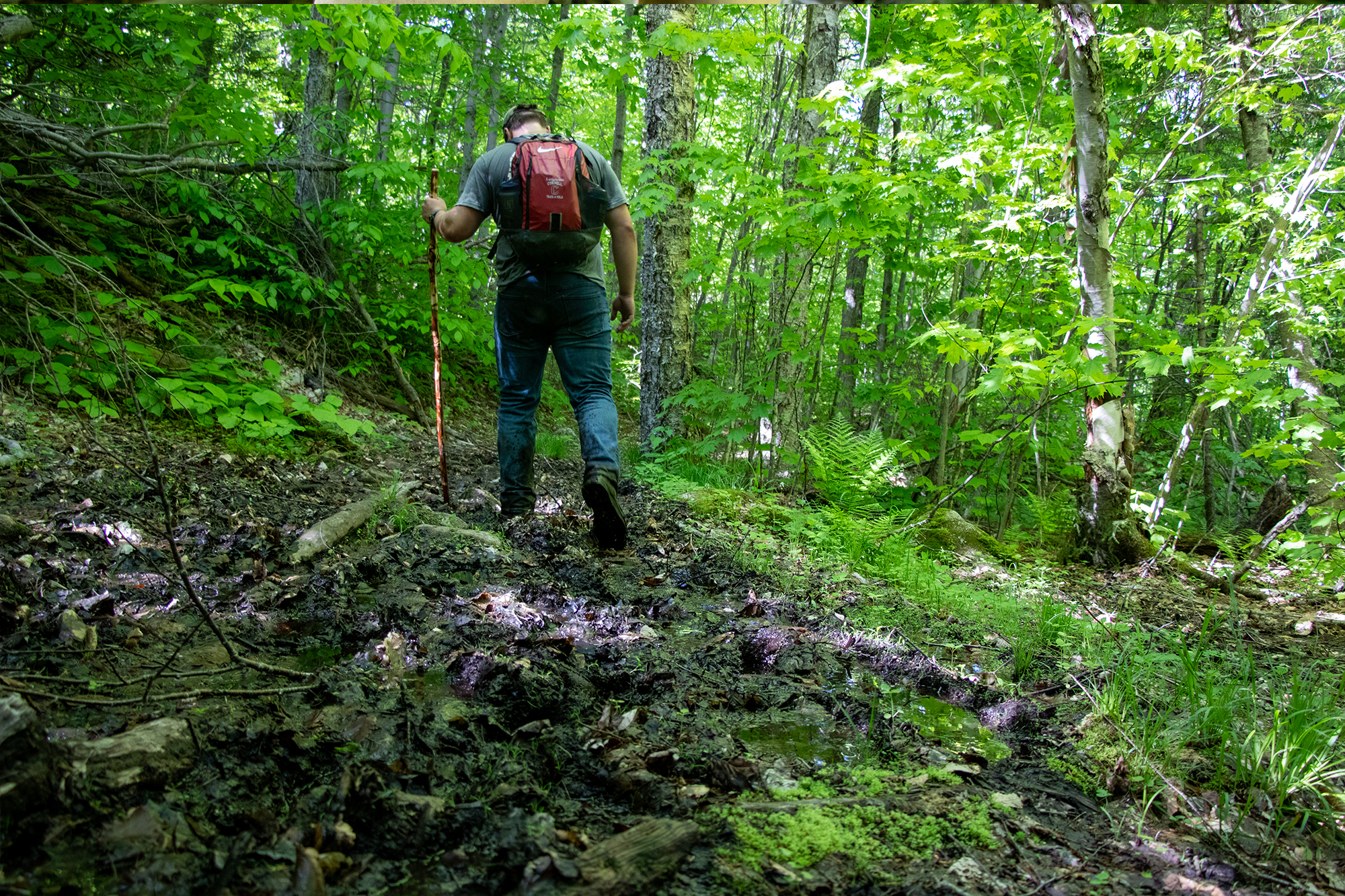 Tips for Hiking During Mud Season in the Adirondacks