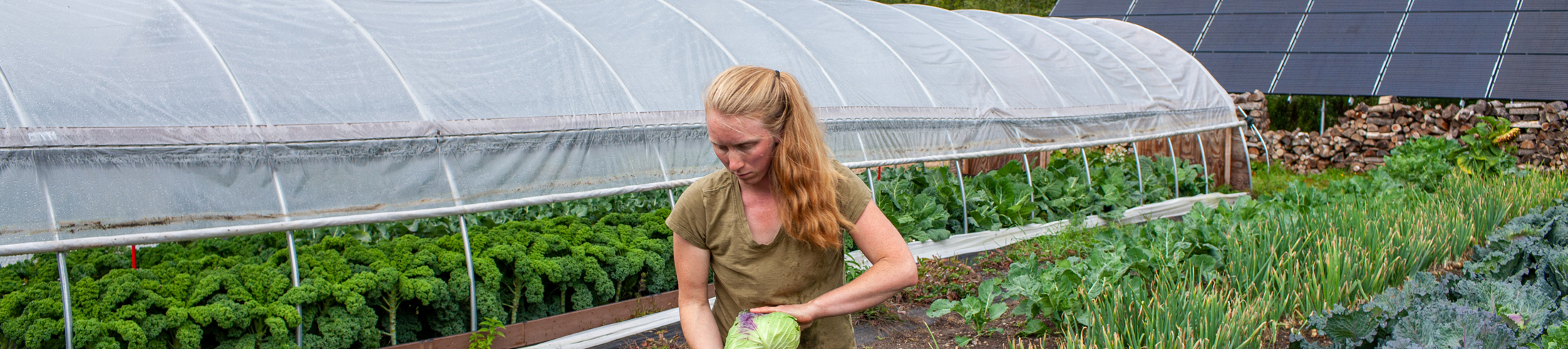 Micro-Grants for Adirondack Farmers