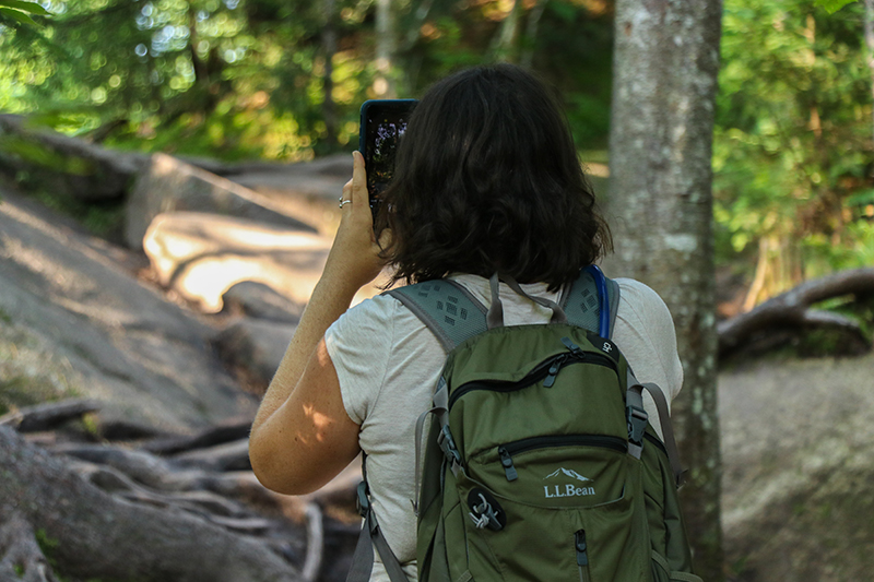 5 Things You Can Do to Be A Better Advocate for the Adirondacks on Social Media
